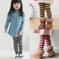 2014 winter stripe female child children's clothing baby child long trousers legging plus velvet kz-2232