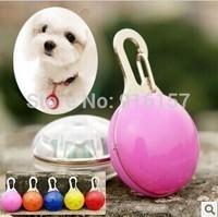 Led pendant luminous pet hangings finaning teddy the dog luminous pendant neon dog accessories dog supplies
