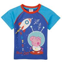 Pepe the pig peppa pig children's T-shirts in summer 2014 new children's wear short sleeved T-shirt boys