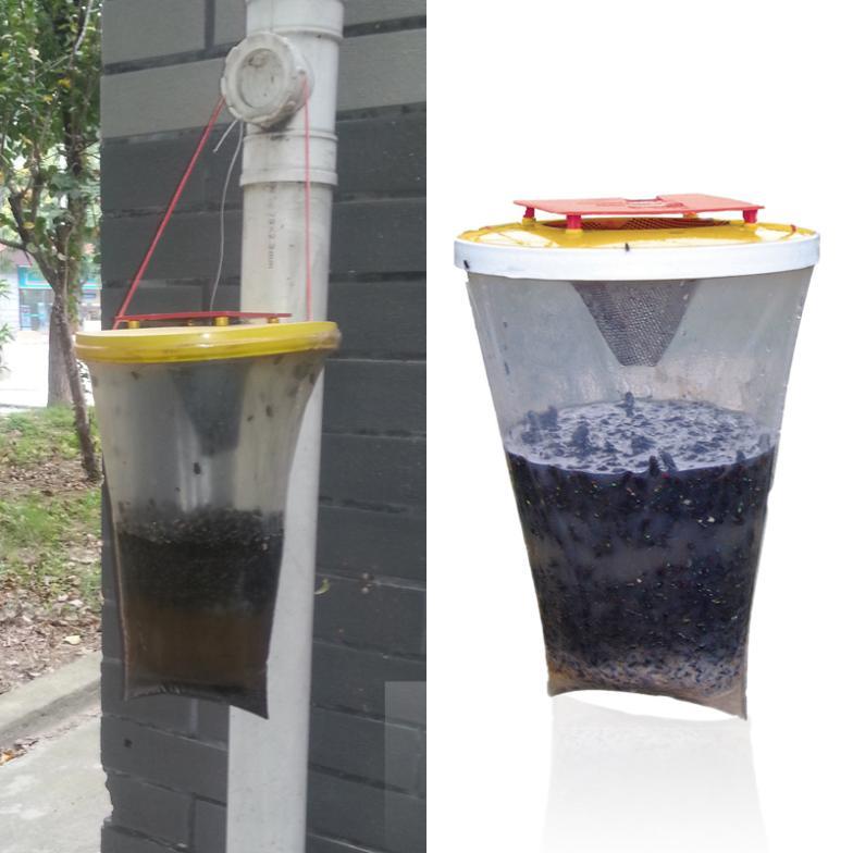 Средство для борьбы с насекомыми-вредителями Unbrand Traps средство для борьбы с насекомыми вредителями inadays zapper
