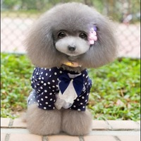 Free shipping new 2014 spring and summer clothing for dogs wave point lace pet clothing dog jacket T-shirt dog clothes