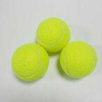 Free Shipping High Quality Strong Elastic Force Sports Training Ball Tennis Ball  9pcs/lot