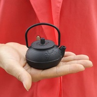 Mini Japanese old iron pot of cast iron pot of small pig iron teapot tea accessories boutique tea pet furnishing articles