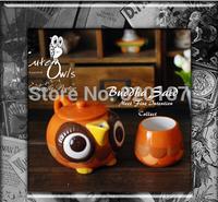 2015 Export America  Hand painted ceramic owl series set tea set personalized 3 pcs tea set 1 pot 2 cup flower tea set gift box