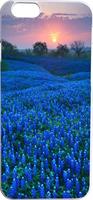 Blue Flower Land At Sunset Hard Unique Designer Slim case for apple iphone 6 4.7 inches