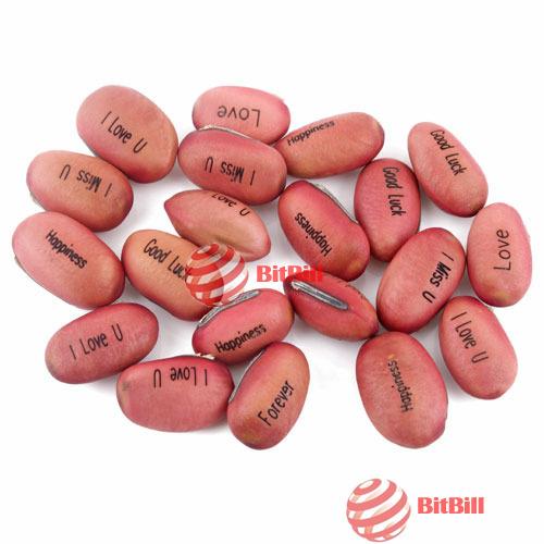 bitbill original barnd 5 PCS Magic Bean Seeds Gift Plant Growing Message Word best choice(China (Mainland))
