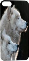 Beautiful White Wolves In Pair Hard Unique Designer Slim case for apple iphone 5 5S 5G