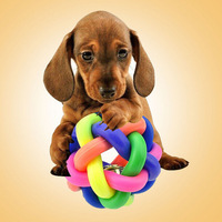 Dog's Favourate Colorful Ball Toys With Small Bell