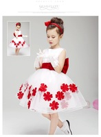 Retail! 2014 new dress with red flowers beautiful princess dress, baby dress the best gift. Free shipping!
