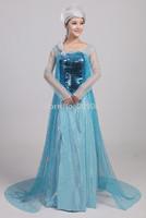 Women's Princess Frozen Elsa Anna Cosplay Dress Costume Adult Custom Made For Child or Girls