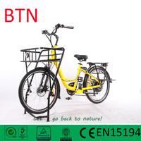 2015 new design electric cargo bike cargo electric bike for post