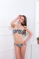 2015 European and American trade of the original single wholesale sexy bikini swimwear steel prop gather free shipping