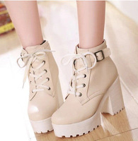 Womens Lace Up Platform Round Toe Shoes High Chunky Heel Winter Warm Ankle Boots