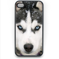 Siberian Husky Hard Plastic Snap on Case Cover for iPhone 4s Free Shipping