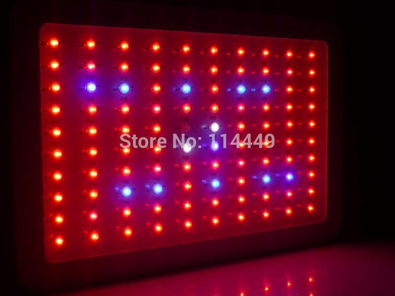 Grátis frete 300 W LED cresce luzes para plantas crescer alta qualidade full spectrum LED de iluminação da lâmpada para crescer tenda e hidroponia(China (Mainland))