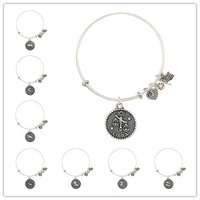 the Zodiac expandable wire Alex and Ani bangles set with charms antique silver plated for women free shipping