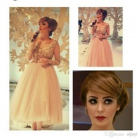 DH44 2015 Best Selling Ball Gown Tulle Appliqued Long Sleeve Short Length Prom Dress