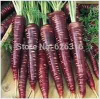 Original packaging  30pcs/pack Vegetable seeds purple carrot seeds the best anti-aging anti-cancer vegetables seeds