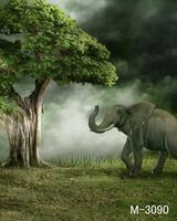 1.5 * 2M Elephant Background  photography backgrounds photo M 3090