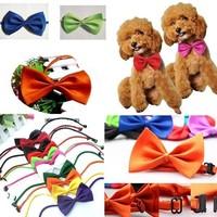 1 Piece !! Colourful Dog Pet Cat Puppy Bow Neck Tie Necktie Acccessory Collar Adjustable