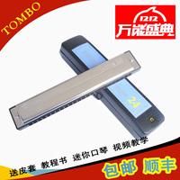 24 polysyllabic harmonica tombo 6624 senior holsteins tong bao