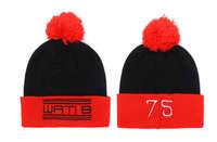 NewHot 2015New WATIB Beanies hats Fashion Hip Hop Men's women winter knitted caps Skullies hat