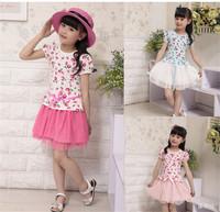 Girl Dress 2014 Summer Floral Baby Girl Dress Princess Tutu Dress Girls Strawberry Party Dress kids clothes