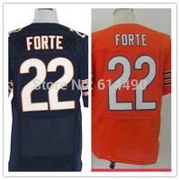 Wholesale Free shipping men elite jerseys Chicago #22 Matt Forte American football jersey Stitched Jersey mix order