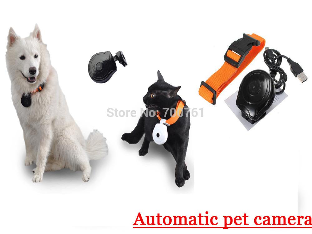 Mini Automatic Pet camera Dog cat video photo recoder pet camera support 16G TF with lightweight(China (Mainland))