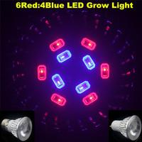 10X E27/GU10 Full spectrum led grow light - high power grow lamp Grow LED10W(6Red+4Blue) for seedling growing flowering blooming