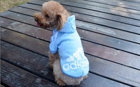 Hot sale 2014 New pet Dog T-Shirts Sweater clothing for pet dog clothes- LX019