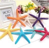 Fingers starfish natural shell ornaments ornaments Mediterranean decor wall hangings wedding props