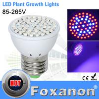 Foxanon Brand Grow light Full Spectrum led E27 5W 220V  Bulb lamps 61Leds 42 Red 19 Blue for Flowering Plant and Hydroponics