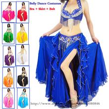 2015 neue bauchtanz kostüm set 3 Stück( bra+skirt+belt) bauchtanz kleider 11 Farben bauchtanz professionelle versandkostenfrei(China (Mainland))