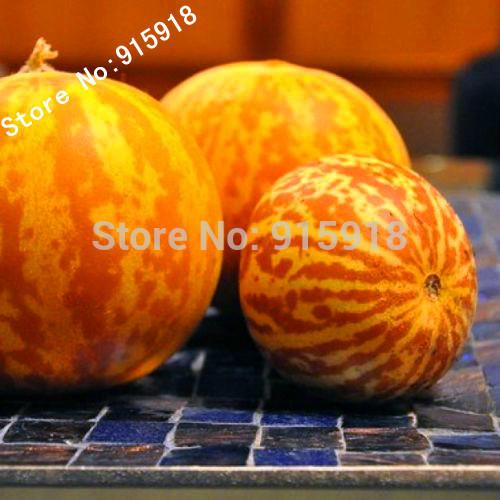 Карликовое дерево Bonsai001 50 s seeds001 карликовое дерево oem 12 220