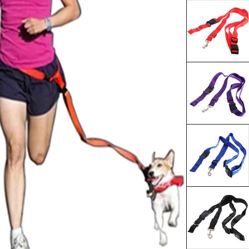 1pcs Nylon Running Pet Dog Leash Rope Training Slip Adjustable Traction Collar Rope Chain,dog harnessTraining Walk(China (Mainland))
