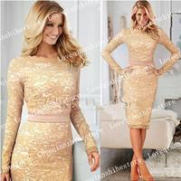 2015 New Plus Size Elegant Lace Fashion Design Sexy Cocktail Party Work Style Long Sleeve Bodycon Sheath Pencil Women Dress