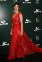 Free Shipping 2015 A Line V Lace Ruched Tulle Chiffon Sexy Bodice Backless Elie Saab Halle Berry Dresses Red Carpet Gowns