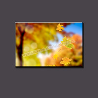 Nice Wall Art Canvas Decor Painting of Yellow Leaf from HD Imager Art Print Unstreched for Home Decoration Canvas Print Picture