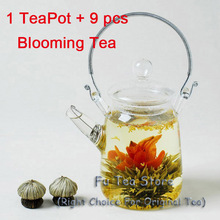 Free shipping 1 pcs Tea Kettle + 9 pcs different Blooming Tea heat resistant glass flower tea pot