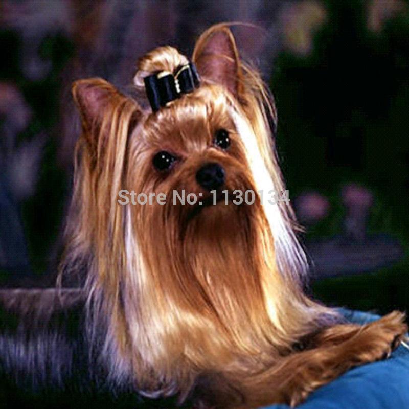 волос щенок полный вышивка