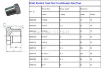 British Standard Taped Pipe Thread Hexagon Steel Plugs