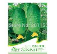 1 original packag 40 Seeds Japan Cucumber Seeds,vegetable seeds