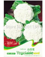 1 original pack Vegetable seeds50 pcs White Cauliflower Broccoli Seeds Free Shipping