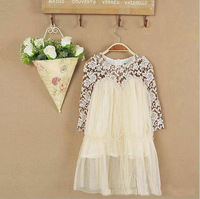 Free  Shipping 2015 New Spring Long Sleeve Lace Girl Dress  Baby Toddler Children Mesh Dress Tulle Dresses Pink Beige