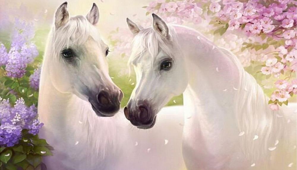 Horse Sitting Drawing Two Horses Diy Diamond Drawing