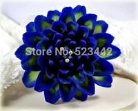 Heirloom 100 Seeds Dahlia Dinnerplate Dinner Plate Lilac Time Flower Garden Seeds B2051