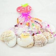 Souvenirs souvenirs wholesale natural seashells seaside souvenirs souvenirs