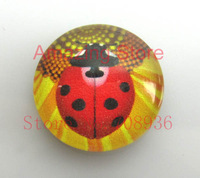 Free Shipping Wholesale 15pcs  The beetles Pattern Oval Glass Dome Seals Cabochon Fit Cameo Settings25mm