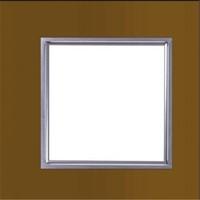 LED Panel Light 300x300mm 8W  White Light /Warm White